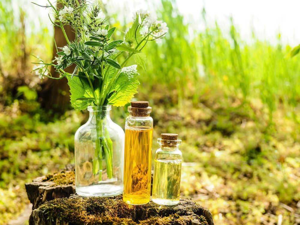 Conoce la homeopatía
